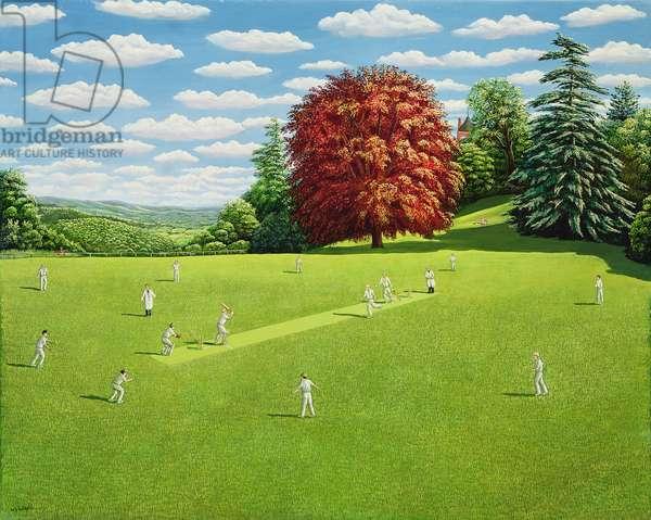 School Cricket, Surrey, 1991