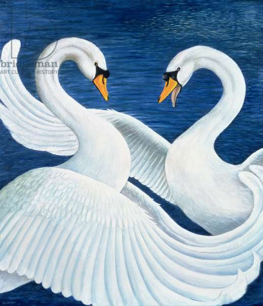Ruffled Feathers, 1997 (oil on canvas)
