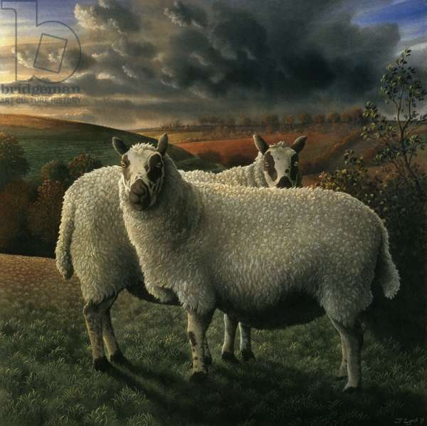 Sheep, 1991 (tempera on panel)