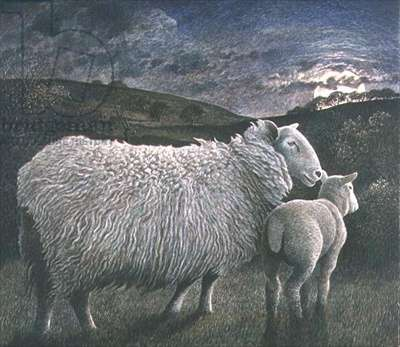 Sheep and Lamb, 1994 (w/c on paper)