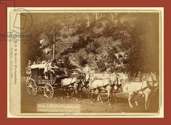 Black Hills Treasure Coach