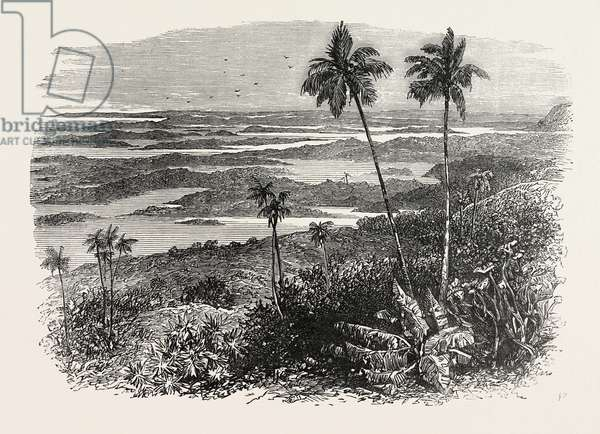 View in the Bermudas, Bermuda, 1870s Engraving