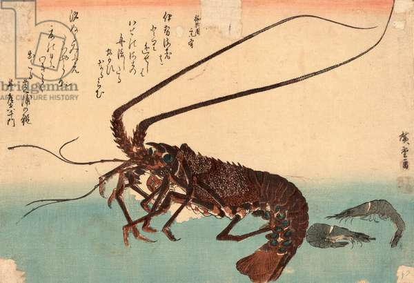 Ise Ebi to Shiba Ebi, Shrimp and Lobster. [Between 1835 and 1844], 1 Print : Woodcut, Color ; 25.3 X 37 .
