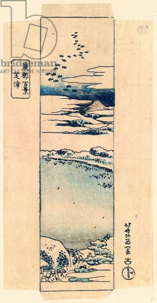 Shibaura, Katsushika [1833 or 1834], 1 Print : Woodcut, Color ; 21.2 X 10.5 ., Print Shows Landscape with Pilgrims at Roadside Rest Stop and Mount Fuji in the Distance.