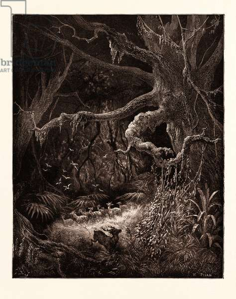 The Forests on the Banks of the Mississippi, by Gustave Doré, 1832 - 1883, French. Engraving for Atala by Chateaubriand. 1870, Art, Artist, Romanticism, Colour, Color Engraving