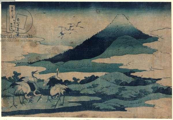 Soshu Umezawa Zai, Umezawa Manor in Soshu. [1832 or 1833], 1 Print : Woodcut, Color ; 25.2 X 37.3 ., Print Shows Cranes on the Ground and in Flight with Mount Fuji in the Background.