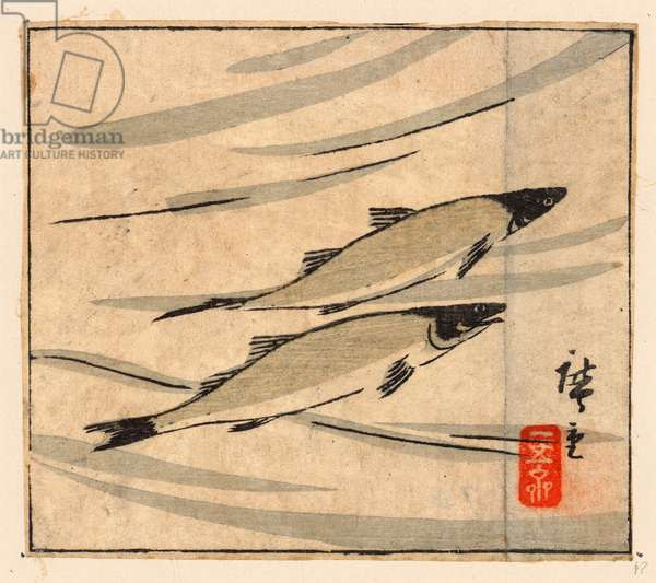 Ayu Zu, River Trout (Ayu). [Between 1868 and 1894], 1 Print : Woodcut, Color ; 9.6 X 10.8 .