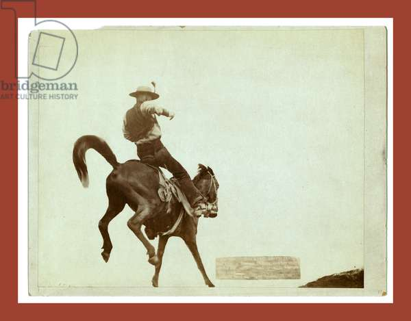 Bucking Bronco. Ned Coy, a Famous Dakota Cowboy, Starts Out for the Cattle Round-Up with His Pet Boy Dick.