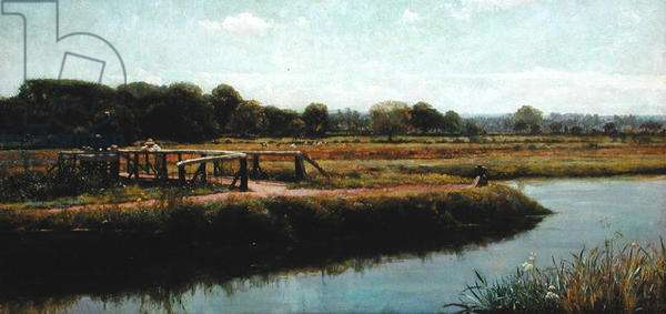 Walsham Meads (oil on canvas)