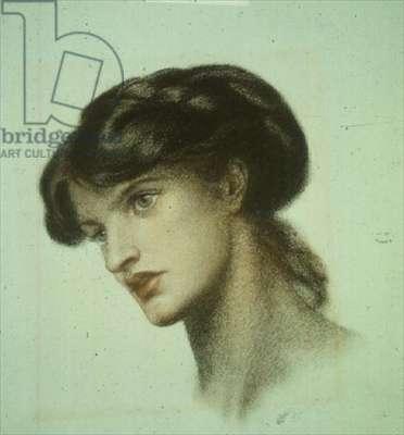 Portrait of Mrs. Stillman (coloured chalks)