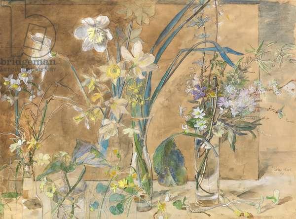 Flowers, 2003 (w/c on paper)