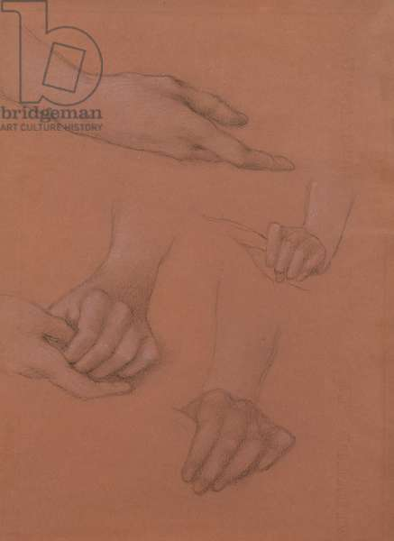 Studies of Hands for the Portrait of Mary Gaskell (black & white chalk on paper)