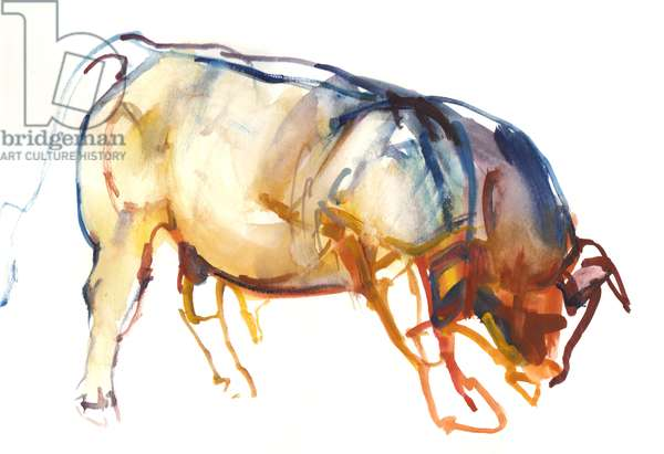 Little Bull, 2010, (watercolour and gouache on paper)