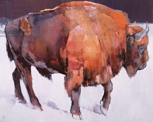 European Bison (oil on canvas)