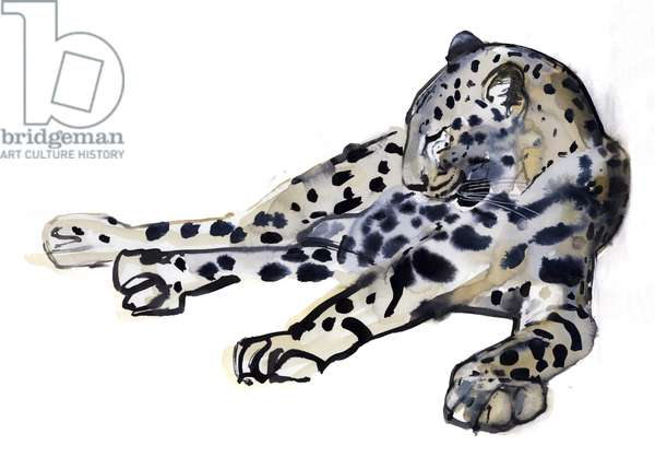 Recumbent (Arabian Leopard), 2008 (w/c on paper)