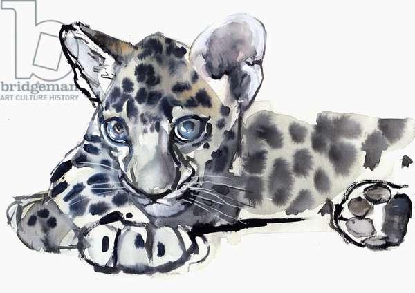 Spotty (Arabian Leopard Cub), 2008 (w/c on paper)