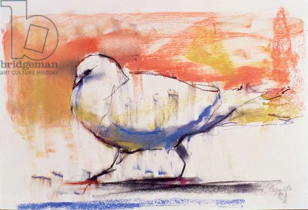 Walking Dove, Trasierra, 1998 (conte and charcoal on paper)