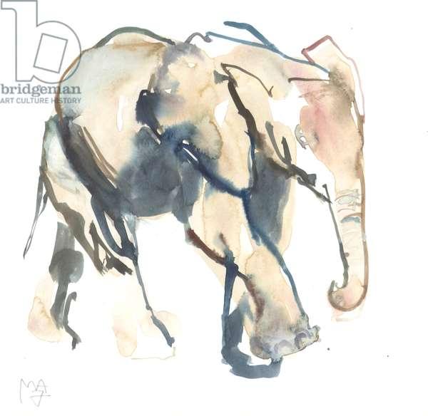 Elephant calf, Loisaba, 2017 (watercolour on paper))