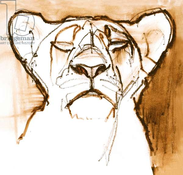 Sepia Cub, 2020, (mixed media on paper)
