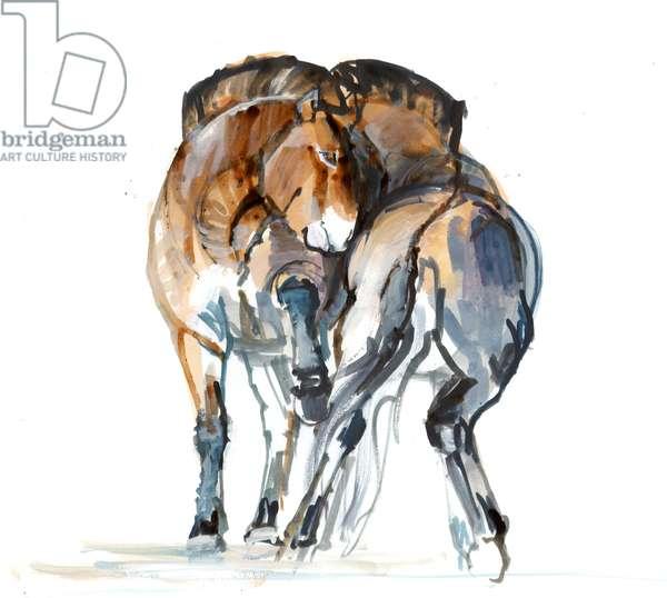 Power Dance (Przewalski), 2013 (sennelier ink, watercolour and gouache)