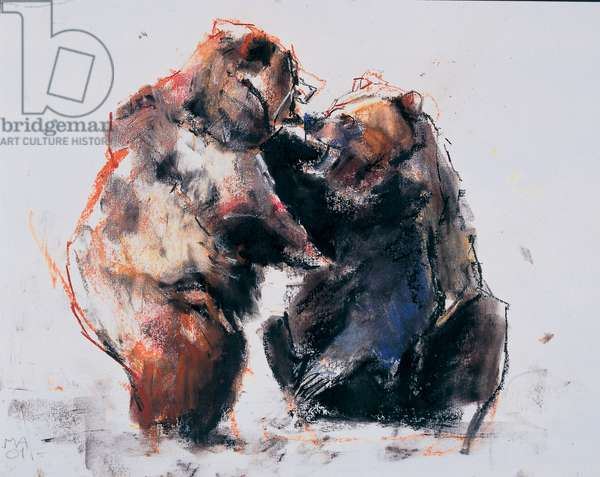 European Brown Bears, 2001 (charcoal & conte on paper)