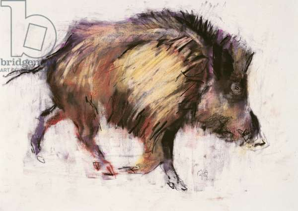 Wild Boar Trotting, 1999 (graphite, conte and charcoal on paper)