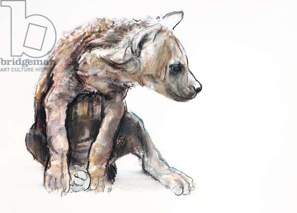 Hyaena Pup (profile), 2019 (conté and charcoal on paper)