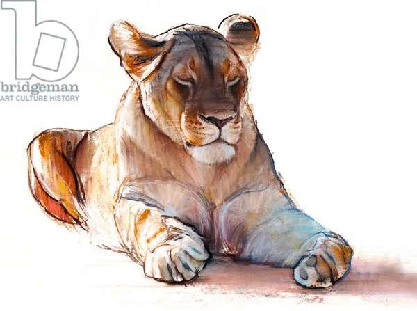Yogi Lioness, 2019, (conté and pastel on paper)