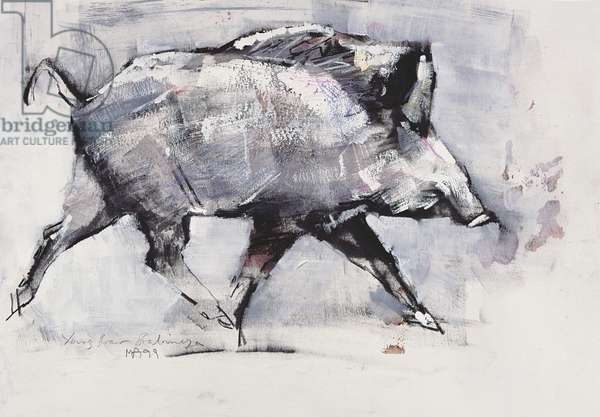 Young boar, Bialowieza, Poland (mixed media on paper)