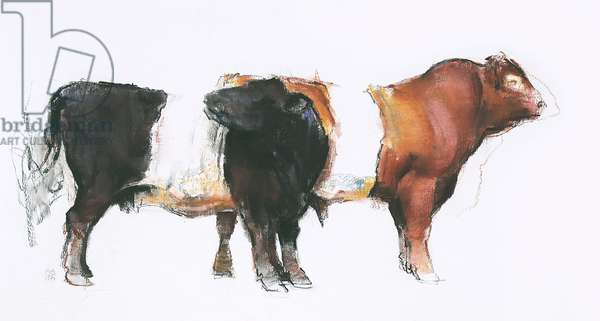Belties, 2006 (charcoal & conte on paper)
