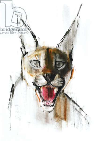 Snarl (Arabian Caracal), 2009 (conte & charcoal on paper)