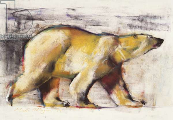 Polar Bear (mixed media on paper)