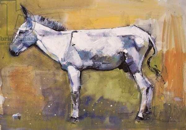 Donkey Stallion, Ronda, 1998 (mixed media on paper)