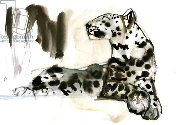 Arabian Leopard, 2008 (w/c on paper)