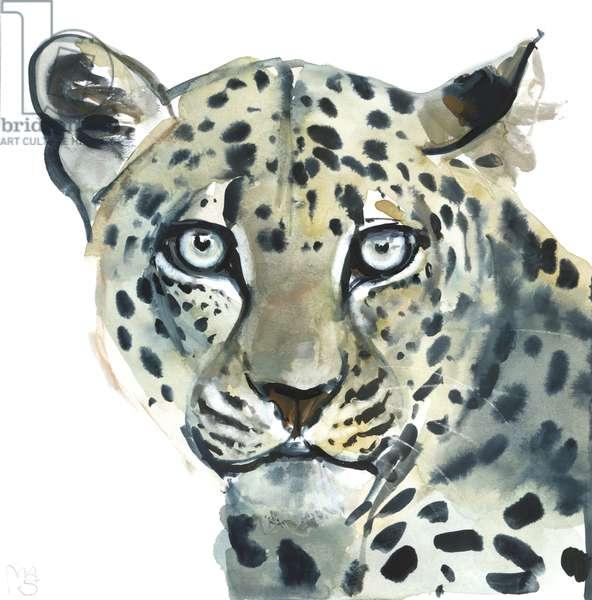 Leopard, 2015, (watercolour on paper)