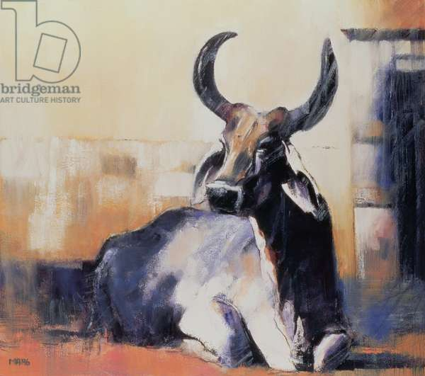 Sacred Cow, Bhuj, 1996 (oil on paper)