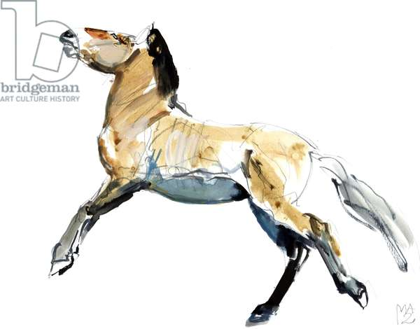Free (Przewalski),2012, (mixed media on paper)