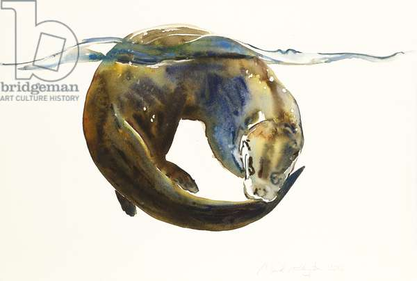 Circle of life,  2014, (watercolour on paper)