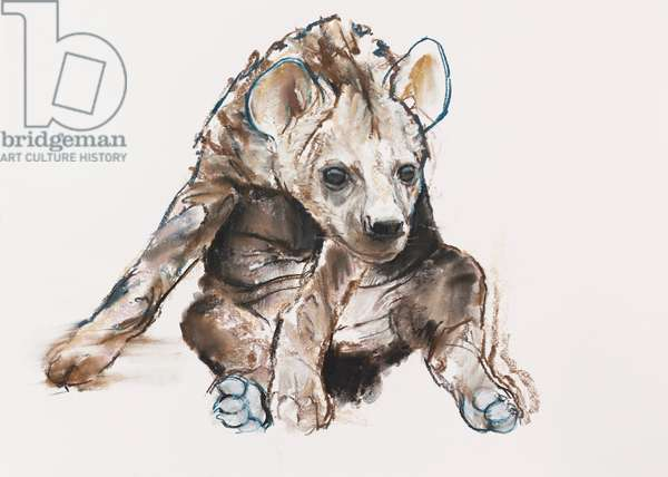 Hyaena Pup (head down), 2019, (conté and pastel on paper)