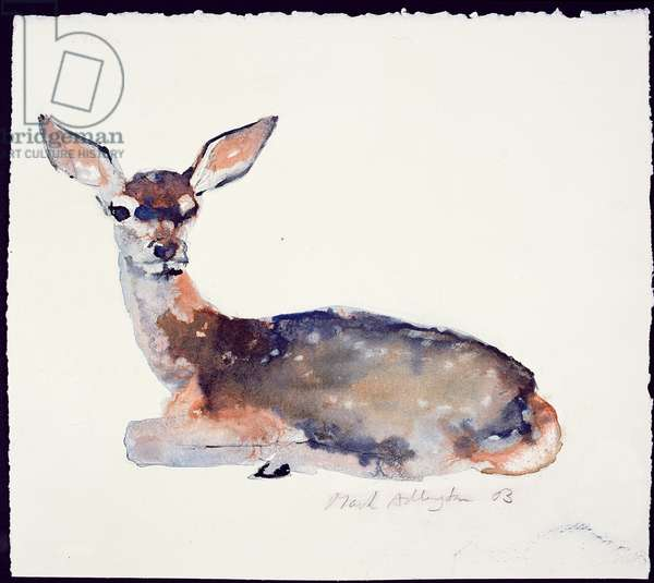 Fawn, 2003 (ink & w/c on paper)
