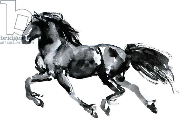 Flying Friesian, 2015, (chinese ink on paper)