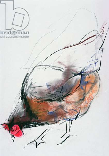 Feeding Hen, Trasierra, 1998 (graphite, conte and charcoal on paper)