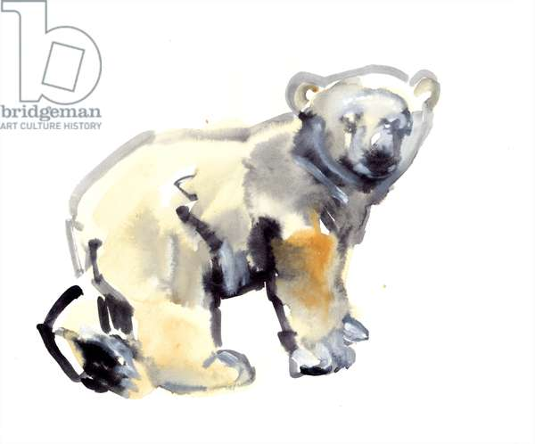 Cub, 2015, (watercolour and gouache on paper)