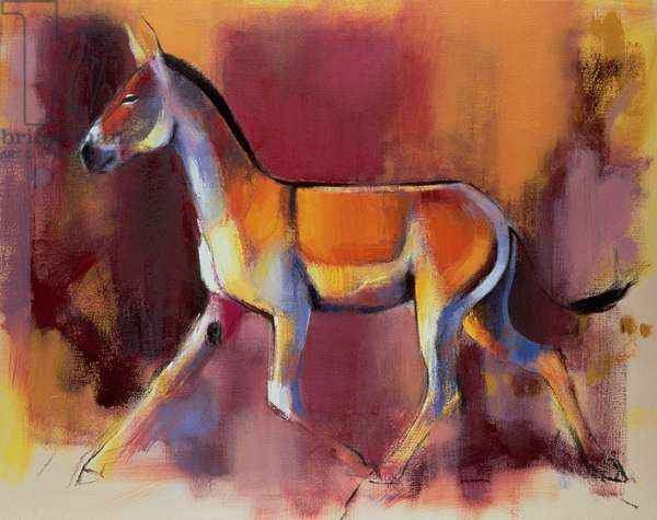 Wild Ass, Rann of Kutch, 1996 (oil on canvas)