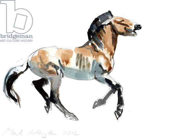 Greek (Przewalski), 2012, (mixed media on paper)