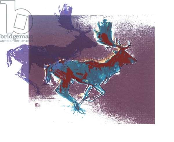 Fallow Bucks (blue/red, purple), 2015, (screen print)