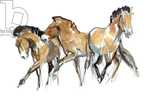 Mistral Three (Przewalski), 2013 (sennelier ink, watercolour and gouache)