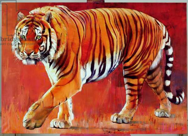 Bengal Tiger (oil on canvas)