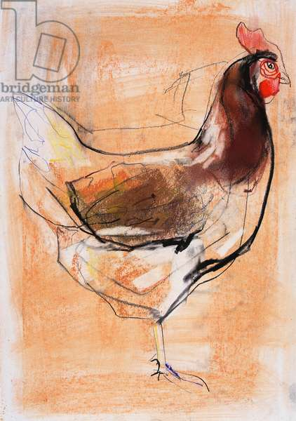 Standing Hen, 1998 (graphite, conte and charcoal on paper)