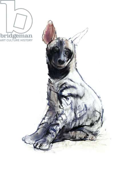 Striped Hyaena Pup (seated), 2010, (conté and pastel on paper)